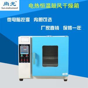 电热鼓风干燥箱_小烘箱恒温鼓风干燥箱烘干箱工业老化101/202系列