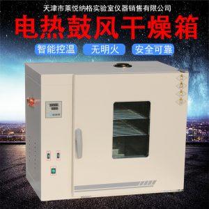 电热鼓风干燥箱_鼓风恒温工业小烘箱实验室中药材烘干箱大灯烤箱恒温箱