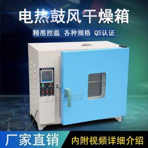 电热鼓风干燥箱_恒温鼓风干燥箱烘箱恒温箱烤箱烘干箱老化实验工业