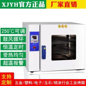 深圳工厂电热鼓风干燥箱琥珀加工实验室恒温烤箱不锈钢小型烘干箱